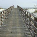 Take a walk down the boardwalk