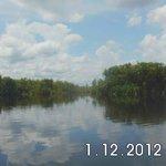Sebangau National Park Central Kalimantan