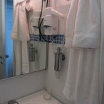 hair dryer and big mirror, good quality appliances