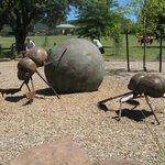 Dung Beetle sculpture in McKenzie Reserve
