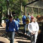 Zoo Bauru