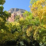 SEDONA LEAVES NOTHING TO BE DESIRED