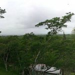 Panoramic view of the jungle from behind the hotel