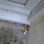 окурки на балконе