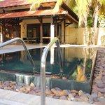 Notre piscine privée et l'immense gazébo