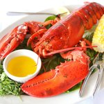 Lobster flown in from Maine