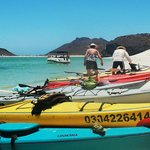 Colorful kayaks on the Sea of Cortez.