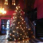 шикарная рождественская елка в холле