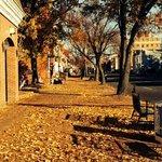 Fall leaves along S. Washington Street