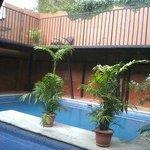 La piscina a modo de jardín interior