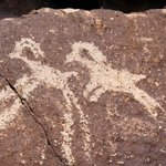 One of hundreds of petroglyphs depicting animals