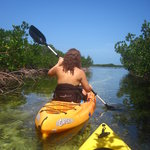 Kayaking through the mangroves, another great way to explore Bimini