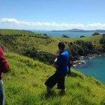 Walking on Waiheke
