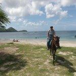 Caribbean riding