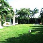 Casa Mateo Back Garden