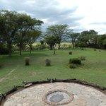 Maasai Mara Basecamp