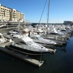 great views over the Marina