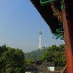 テレビ塔の眺め