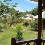 Garden of Ylang Ylang