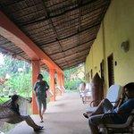 hammock lined hallway