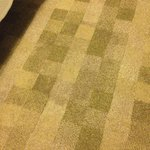 GoodHotel_Rm118_StainedCarpetFootofBedCloseUp