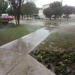 Sprinklers still on