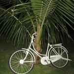 Emporium´s bike ?