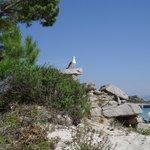 Rocks and birds in Cies