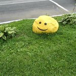 Smiley rock in front roadside