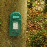fairy's post box