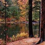 Dorwin Falls Park