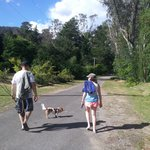 Walking the dog to the Ovens River.