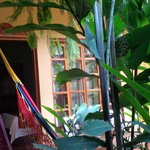 View from hammock in courtyard