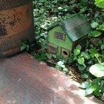 Cute birdhouse hiding in the garden