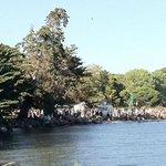 Crab Cove