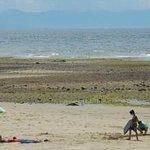 Davis Bay - Annual Sand Castle Event (2)