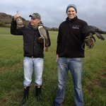 Two happy clients with two of our hunting falcons and a plump partridge.