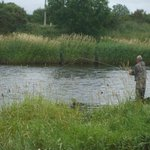 River Moy Fly Pool