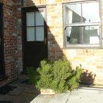 Rear courtyard- room 9