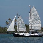 Schooner Ondine - Private Sails