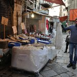 Mercato di Ballarò. rivenditore di baccalà che mostra la sua merce.