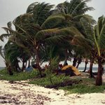 Camping on Silk Caye 1992