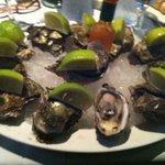 Fresh Oysters - R2 per oyster