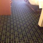 Carpet, room 330