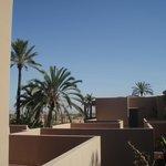 vue de la terrasse avec extension sur la palmeraie