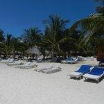 Spiaggia del Jacaranda