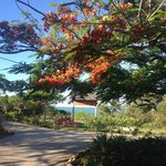 Gabi Beach Eingang