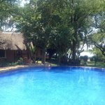 Pool area , Chobe river in background with rooms too left side