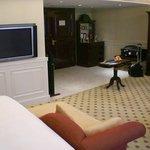 Guestroom - living space