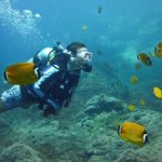Bophut Diving Tours Photo